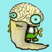 mozkovna ico