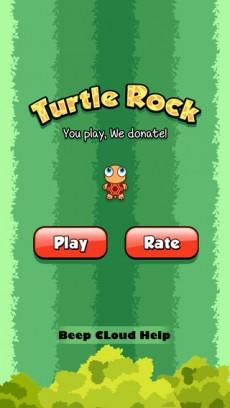 Turtle rock 1