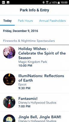 my-disney-experience-fireworks